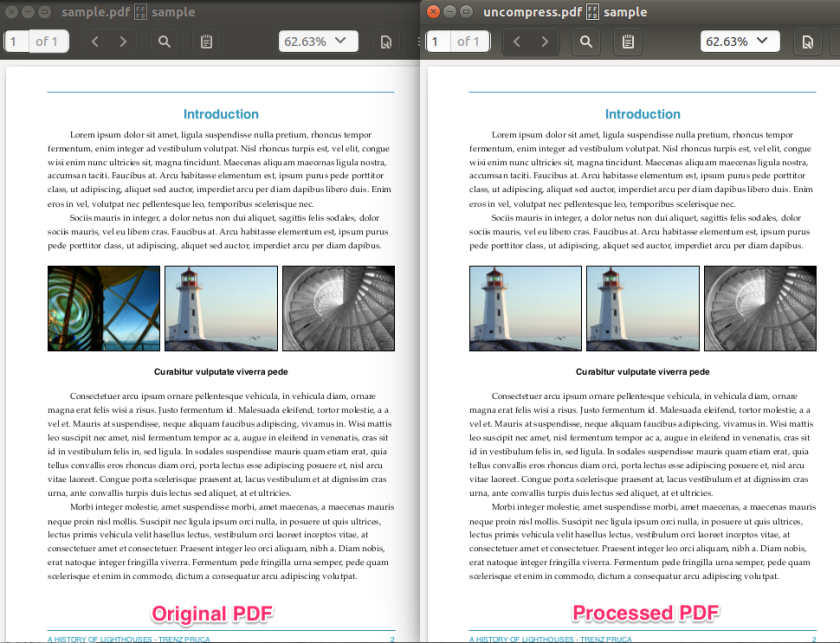 image replaced pdf