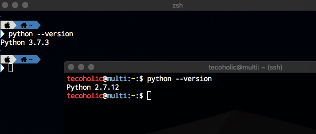 Python Version Check