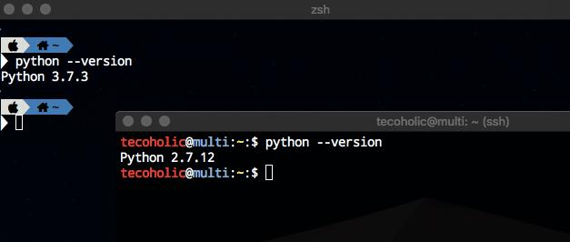 Python Version Check